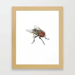 Mosca Framed Art Print