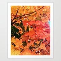 Butterfly in Fall  Art Print
