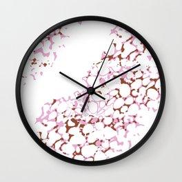Vibrant Sponges 5.0 Wall Clock
