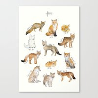 fleet foxes Canvas Prints featuring Foxes by Amy Hamilton