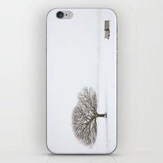 Tree in the Snow iPhone & iPod Skin