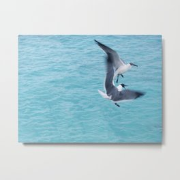 I'm Treading Air Here! Metal Print