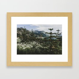 Mount Rainier Summer Wildflowers Framed Art Print