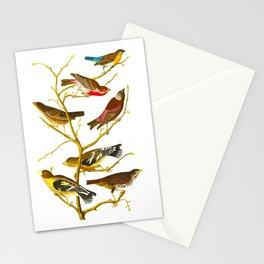 Lazuli Finch, Crimson-necked Bull-Finch, Gray-crowned Linnet, Cow-pen Bird, Evening Grosbeak, Brown Stationery Cards