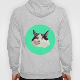 Cat Morpheus Polygonal Graphic Design Hoody