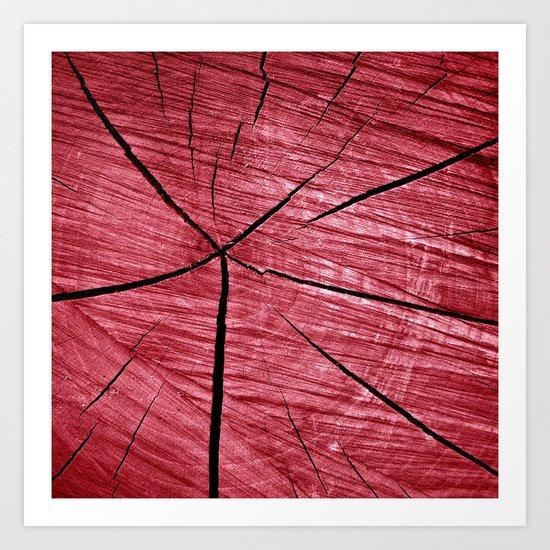 red wood I Art Print