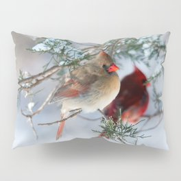 Shining on Her Own (Cardinal) Pillow Sham
