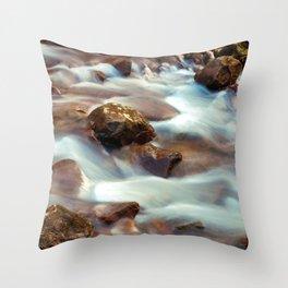 Panther Branch Creek 3 Throw Pillow