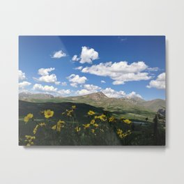 View from 14,000 Feet Metal Print