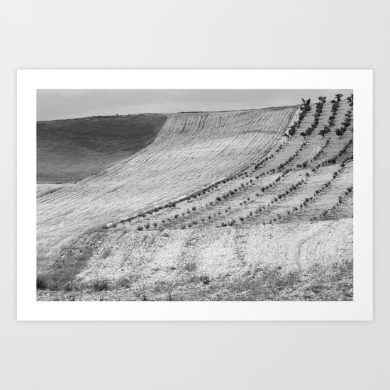 Cereal fields. BN Art Print