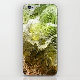 γ Gruis iPhone Skin