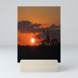 The Beautiful Sunset Mini Art Print