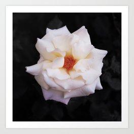 Flower (Fragrant) Art Print