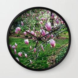Spring Magnolias Wall Clock