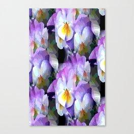 Pretty Violas Canvas Print