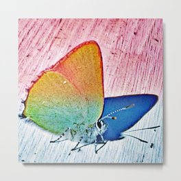 Butterfly with Blue Shadow Metal Print