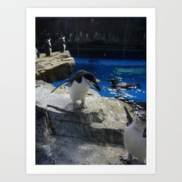 Penguins! Art Print