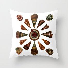 Top-Shaped Shells Throw Pillow