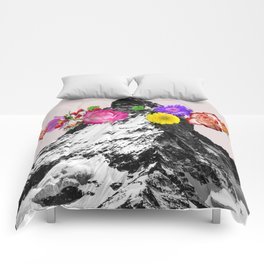 Collective dream Comforters