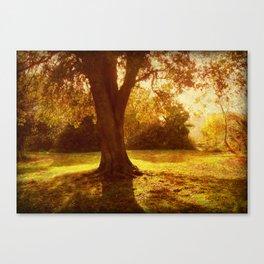 A Pleasant Place to Sit. Canvas Print