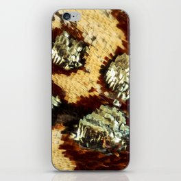 BUTTERFLY MAGNIFIED - ANTEROS FOMOSUS iPhone Skin