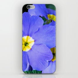 Blue Heartsease Flower iPhone Skin
