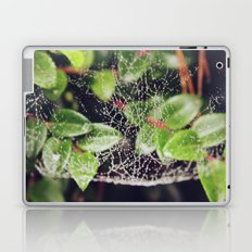 The Spider's Web Laptop & iPad Skin