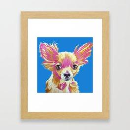 Lucas the chihuahua Framed Art Print