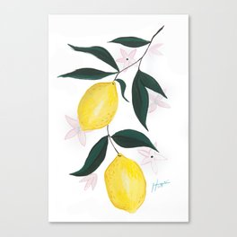 When Life Hands You Lemons Canvas Print