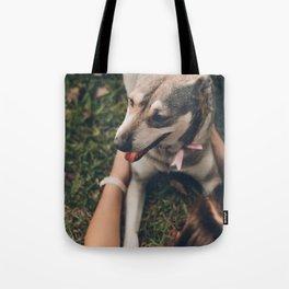 Cute puppy by Manuel Meza Tote Bag