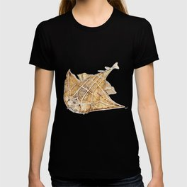 Angel shark T-shirt