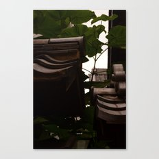 The In Between Canvas Print