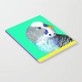 Blue Boy Budgie Bird Notebook