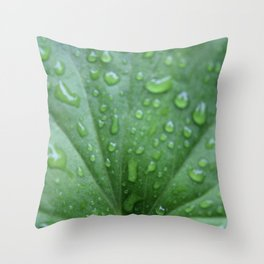 Raindrops on a geranium leaf Throw Pillow