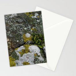 Coastal Rocks With Lichens and Ferns Stationery Cards