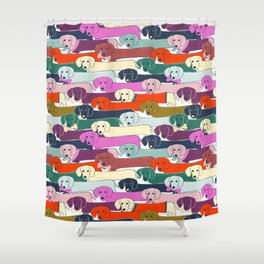 colored doggie pattern Shower Curtain