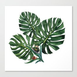 Monstera leaf with snails Canvas Print