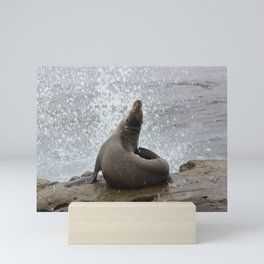 sealion Mini Art Print