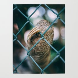 Hand of Sloth Poster