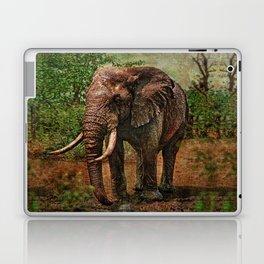 Rembrandt the Elephant Laptop & iPad Skin