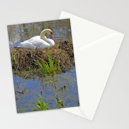 Expectant Stationery Cards
