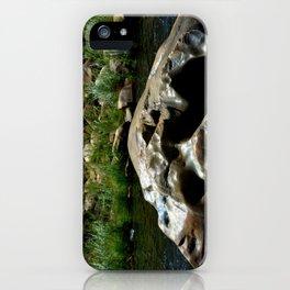 Center Rock iPhone Case