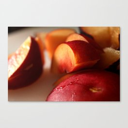 Plums for Breakfast Canvas Print