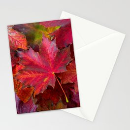 Red fall Maple Leaves Stationery Cards