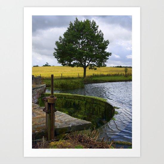 End of the lake Art Print