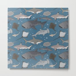 Sharks and Rays Metal Print