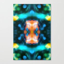 Abstraction float Canvas Print