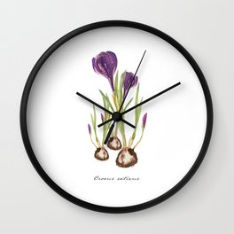 Crocus watercolor  Wall Clock