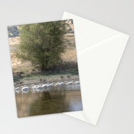 Coming Through Stationery Cards