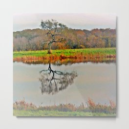 Connecticut Tree Reflection Metal Print